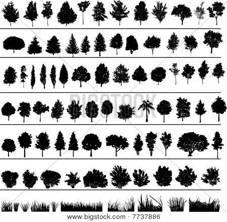 Trees, Bushes, Grass