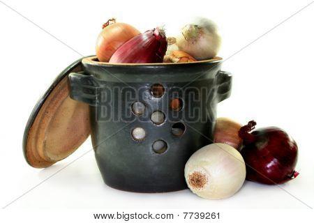 Onion Pot