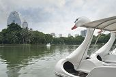 stock photo of pedal  - Swan Pedal boat in the pond of the park - JPG