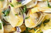 stock photo of clam  - fried beam clams in olive oil close - JPG