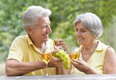 picture of wifes  - The old couple drinking wine - JPG