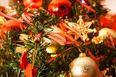 stock photo of bowing  - Inside the Christmas Tree  - JPG