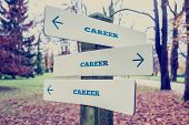 stock photo of directional  - Rural signboard with the word Career with arrows pointing in three directions conceptual of there being many choices different career and diversity - JPG