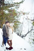 stock photo of amor  - Young amorous couple kissing in winter forest - JPG