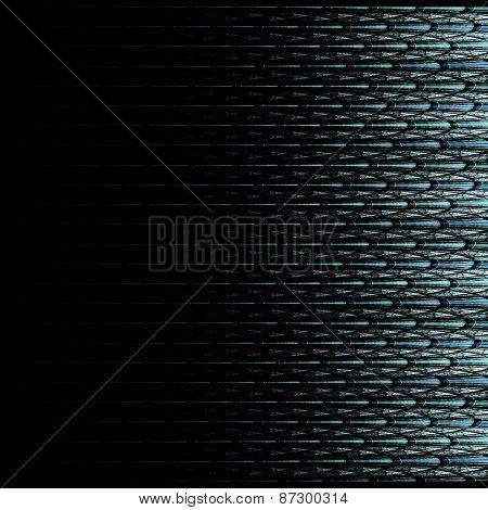 Symmetrical Black Fractal Flower, Digital Logarithm