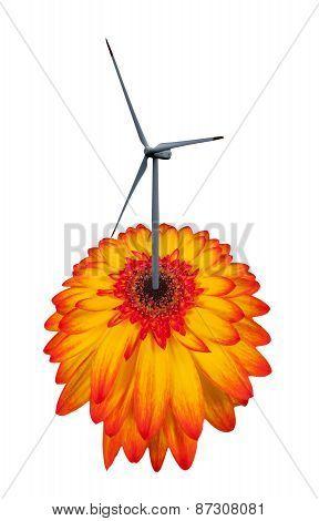 Wind turbine like a flower isolated on white