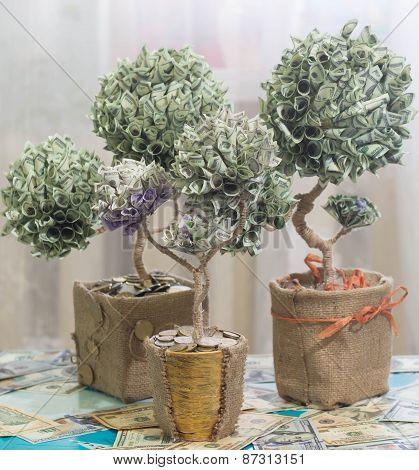 Money Tree Made Of Dollars