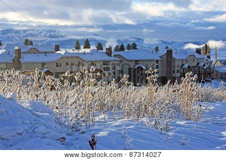 Condominiums in Utah