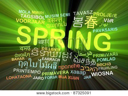 Background concept wordcloud multilanguage international many language illustration of translation spring glowing light