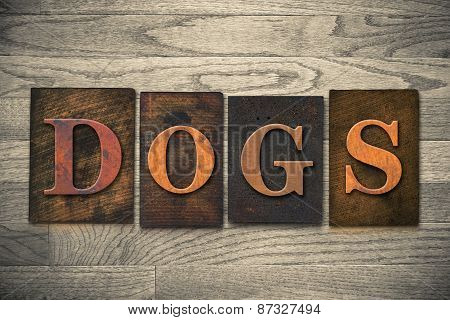 Dogs Wooden Letterpress Theme