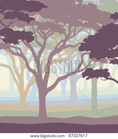 EPS8 editable vector illustration of an open acacia woodland in pastel colors