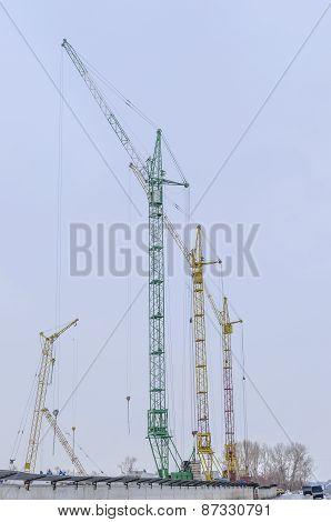 four cranes