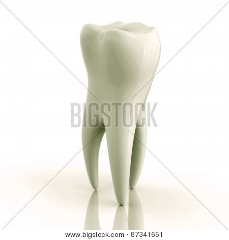 Excellent White Tooth On A White Background