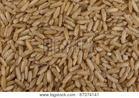 Unpolished Brown Rice Texture Background