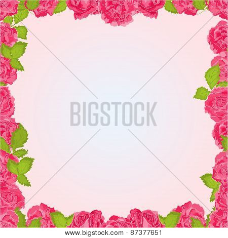 Seamless Frame Of Pink Roses Vector