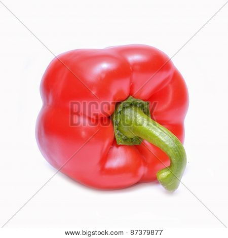Red pepper (capsicum) isolated on white background