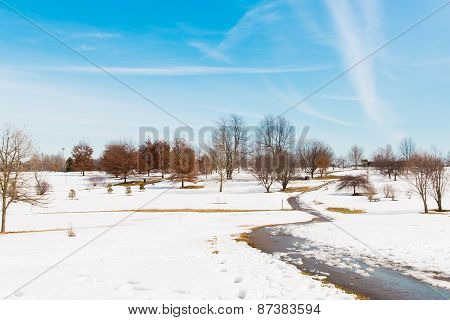 Snowy Park , Winter Scenery