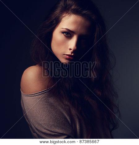 Artistic Beautiful Woman. Art Closeup. Shadow On Half Face