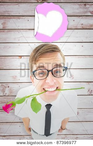 Geeky hipster holding a red rose in his teeth against wooden planks