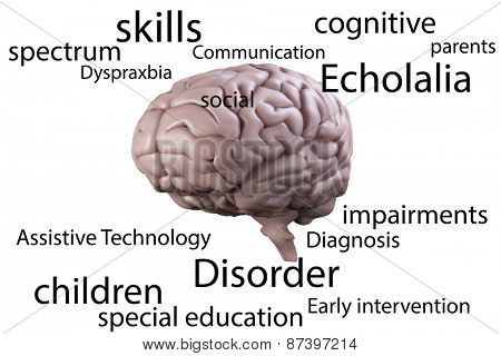 Autism terms against brain