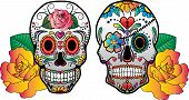 picture of sugar skulls  - 2 colorful vector sugar skulls with roses on the side - JPG
