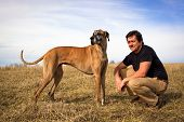 stock photo of great dane  - Handsome man with great Dane in field with blue sky - JPG