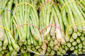 stock photo of bundle  - Bundles of green asparagus on a street market [[** Note: Shallow depth of field ** Note: Visible grain at 100%, best at smaller sizes - JPG