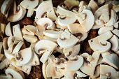 image of champignons  - Food - JPG