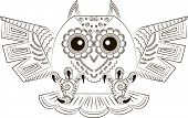 image of angry bird  - Pattern in the form of funny angry owl - JPG