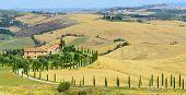 pic of senesi  - Crete senesi characteristic landscape in province of Siena  - JPG