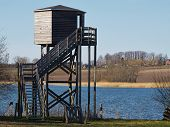 foto of observed  - Bird watching birding wildlife observation tower in a nature park - JPG