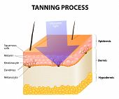 picture of uv-light  - Tanning process - JPG