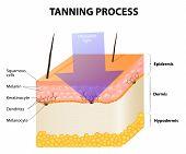pic of uv-light  - Tanning process - JPG
