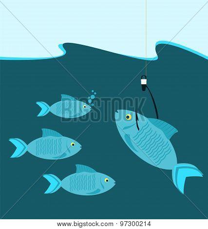 Fish At The Hook