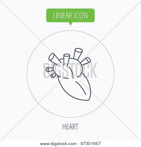 Heart icon. Human organ sign. Transplantation.