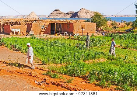 Rural Area Near Lake Nasser In Southern Egypt