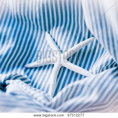 Starfish Blue Striped Background