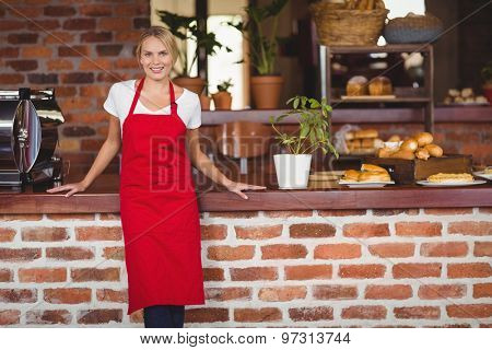 Portrait of a standing waitress at the coffee shop
