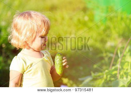 little girl eating cucumber in the garden