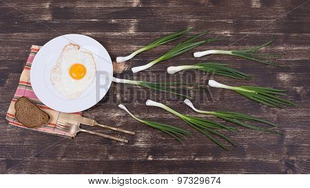 Egg , Chives And Black Plate Look Like Sperm Competition, Spermatozoons Floating To Ovule