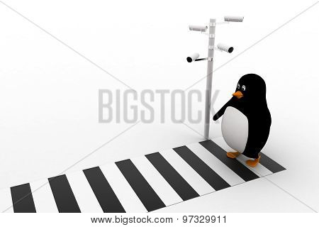 3D Penguin Walking On Zibra Crossing And Cctv Security Camera On Road Concept