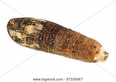 Closeup photo of Taro, root vegetable, isolated on a white background