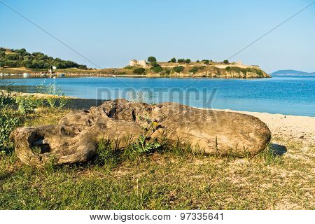 Tree log on a sandy beach, old roman fortress in background