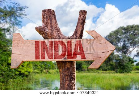 India wooden sign with forest background