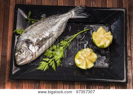 raw and freshness sea bream on a black plate