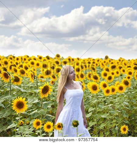 Close up portrait of a beautiful young girl in a white dress on a background field of sunflowers