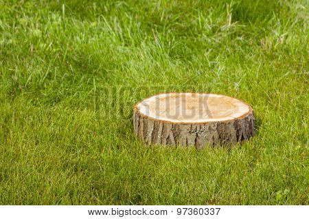 tree stump on the green grass