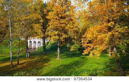 Beautiful autumn landscape with bridge