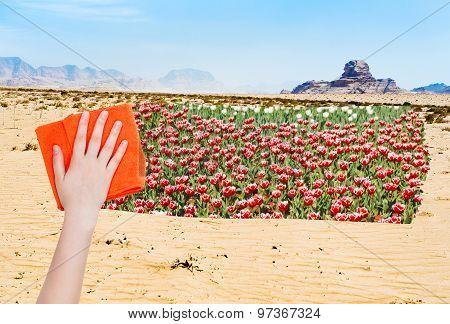 Hand Deletes Desert By Orange Cloth