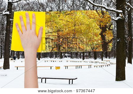 Hand Deletes Snowy Oak Trees By Yellow Cloth